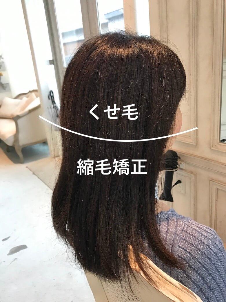 くせ毛と縮毛矯正の境界線